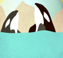 Orcas under the Sun Sticker