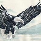 Eagle II by Kashmere1646
