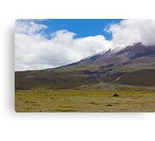 Cotopaxi National Park - Ecuador Canvas Print
