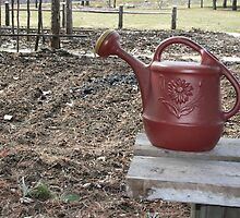 Watering can. 4 Power points, rule of thirds. #2  by philc1