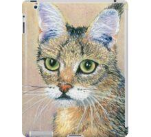 A Pensive Feline iPad Case/Skin