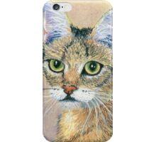 A Pensive Feline iPhone Case/Skin