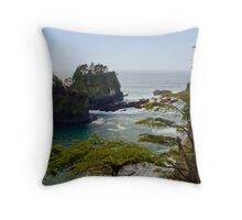 Cape Flattery Inlet, Washington Throw Pillow