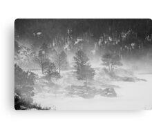 Boulder Canyon Meets Nederland  BW Landscape Canvas Print