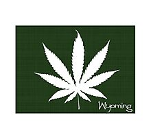 Marijuana Leaf Wyoming Photographic Print