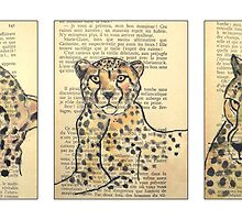 Cheetah by jean-louis bouzou