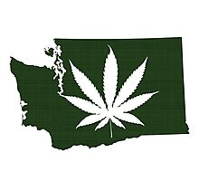 Marijuana Leaf Washington Photographic Print