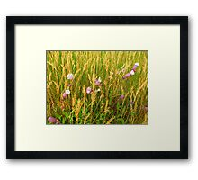For Stephanie With Love From Ireland Framed Print