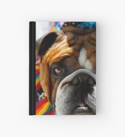 Send In The Clowns Hardcover Journal