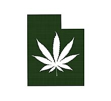 Marijuana Leaf Utah Photographic Print