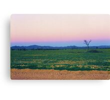 Dusk Hues over the Flinders Ranges Canvas Print