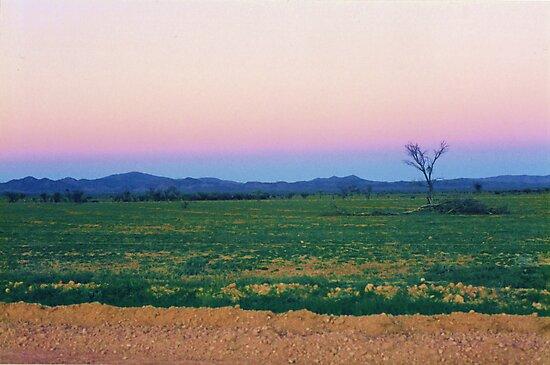 Dusk Hues over the Flinders Ranges by Michael John