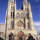 Cathedral of Burgos , Spain by alopezc72