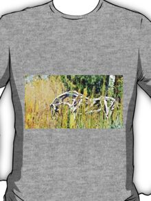 Grazing Wooden Horse T-Shirt