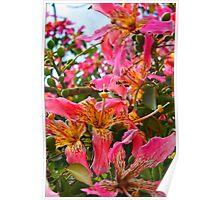 """Blossom Power"" Poster"