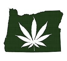 Marijuana Leaf Oregon Photographic Print