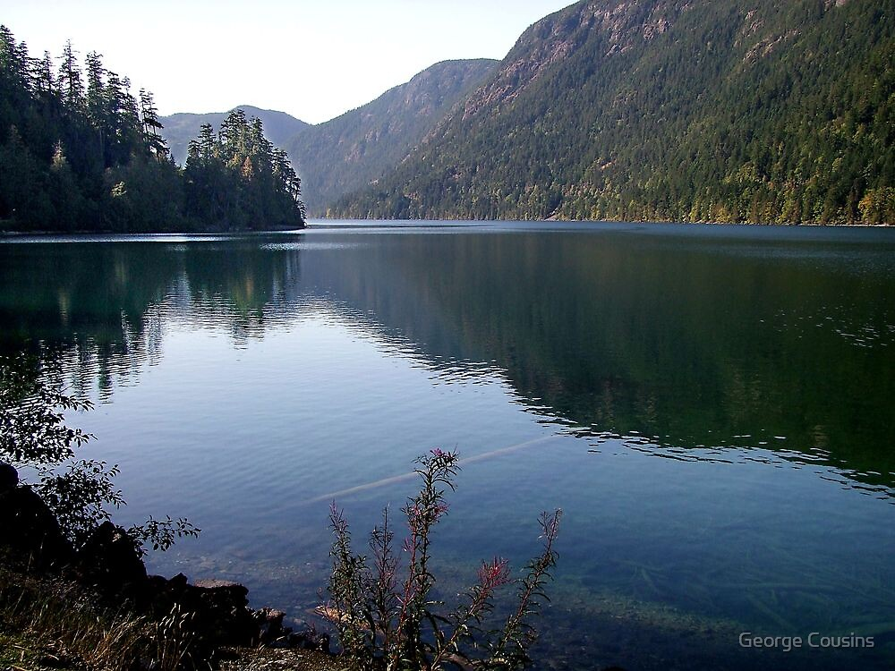 Cameron Lake,Vancouver Island by George Cousins