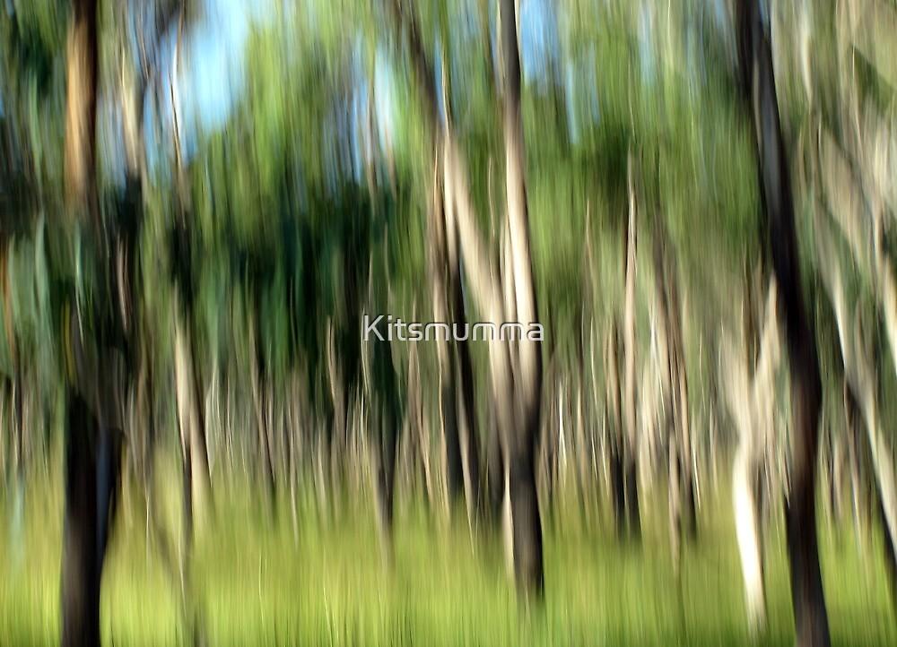 Gone Bush by Kitsmumma