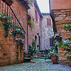 Courtyard in Spello, Italy by al holliday