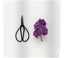 Lilac and Scissors Poster