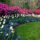 Mixed Bouquet...Tulips, Daffodils, Azaleas by Yvonne Powell