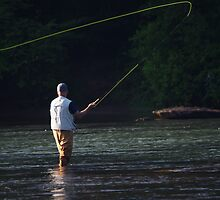 FLY FISHERMAN IN SEARCH OF TROUT by Wayne Hughes