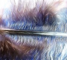Fractal Feather by vigor