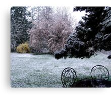Plum Blossoms and Snow Canvas Print
