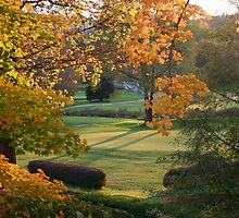 Golf green in fall by Bigart32