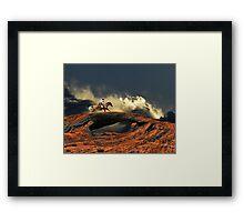 3912 Framed Print