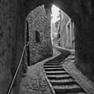 Up a stone stairway by al holliday