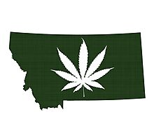 Marijuana Leaf Montana Photographic Print