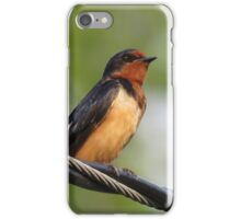 Bird Perched upon Wire iPhone Case/Skin