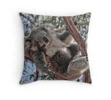 Koala at Phillip Island Victoria Throw Pillow