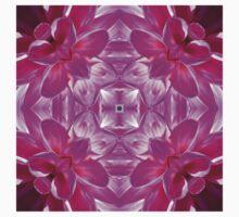 Kurious Kaleido 4 by Matthew Walmsley-Sims