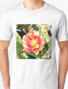 Red and Yellow Cactus Flower Bloom T-Shirt