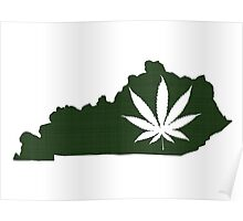 Marijuana Leaf Kentucky Poster