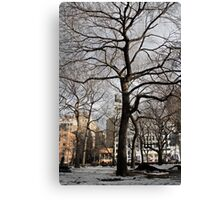 Tree in Union Square Canvas Print