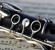 'Vivo' Clarinet  by Scott  Dyer