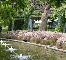 South Bank Parklands by PhotosByG