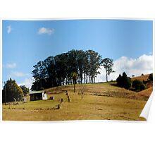 Hills,Trees  & Shacks Poster