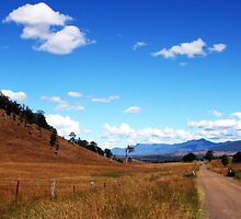 Country Road - Rosevale by Jordan Miscamble