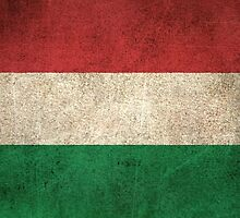 Old and Worn Distressed Vintage Flag of Hungary by Jeff Bartels