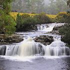 The Falls near Cradle Mountain Lodge by tinnieopener