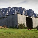 Hayshed on the Hill by Tim Wootton