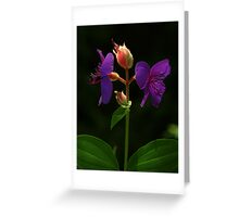 Wear only purple for me Greeting Card