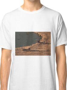 Pair Of Bull Elk Classic T-Shirt