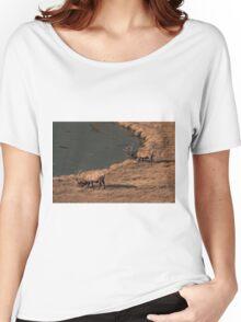 Pair Of Bull Elk Women's Relaxed Fit T-Shirt