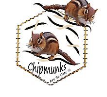 Wee Little Chipmunks. by Sandy O'Toole