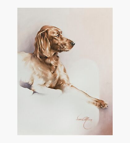 """""""Red Setter"""" Panting in Oils Photographic Print"""